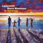 Ladysmith Black Mambazo - Abantwana Basethempeleni