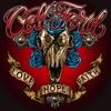 Love Hope Faith, Colt Ford