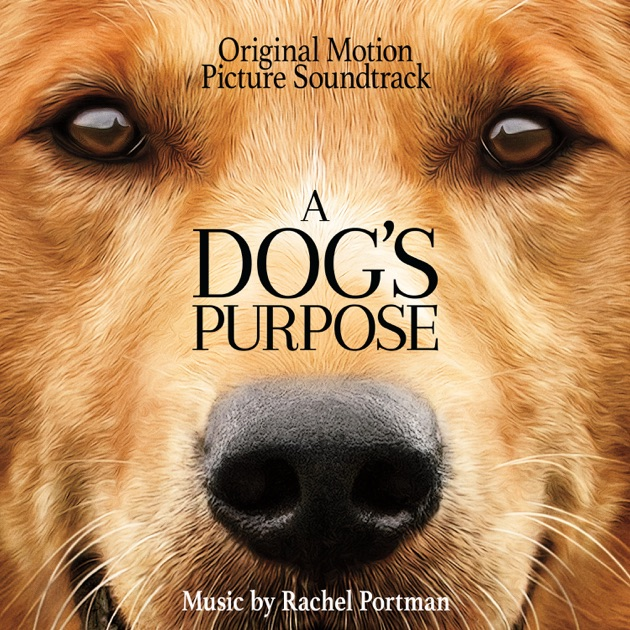 Dog S Purpose Book Review