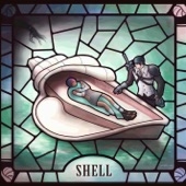 Painting Fences - Shell