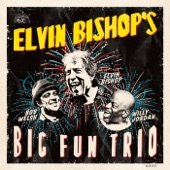 Elvin Bishop - That's What I'm Talkin' About