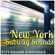 Q Train New York City Subway Sounds - City Sounds Ambience