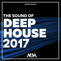 The Sound of Deep House 2017