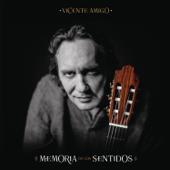 Memoria De Los Sentidos-Vicente Amigo
