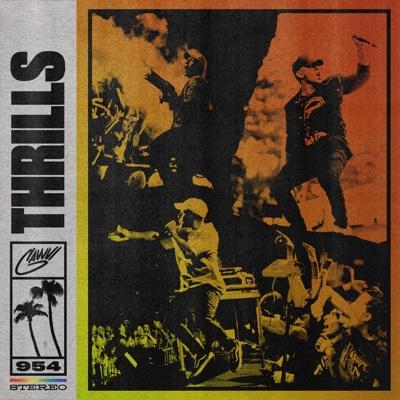 THRILLS - GAWVI song