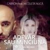 Adevar Sau Minciuna (feat. Nicoleta Nuca) - Single, Cabron