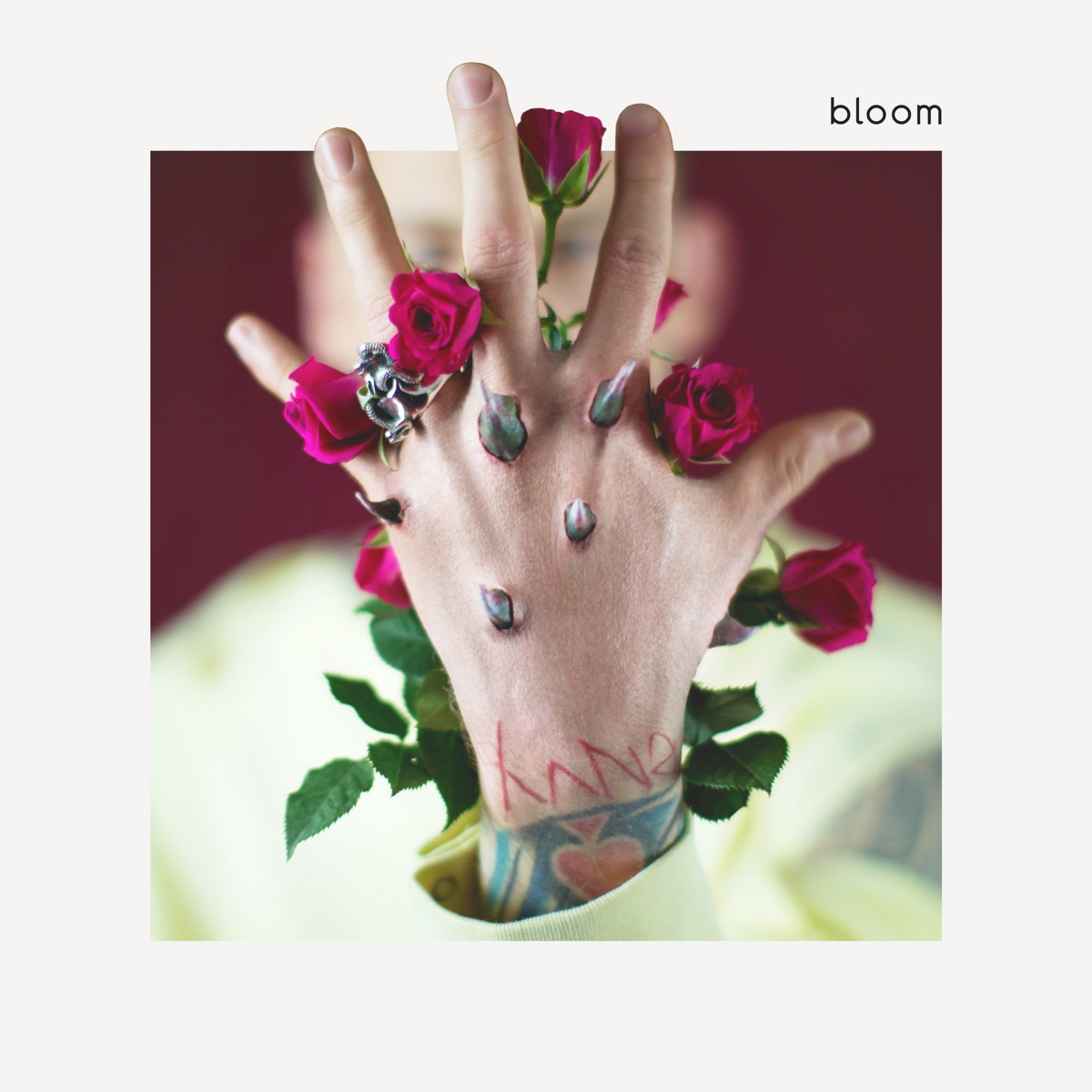 bloom Machine Gun Kelly CD cover