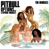 Pitbull - Options (feat. Stephen Marley) [DJ Noodles Remix]