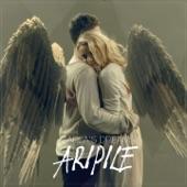Aripile - Single
