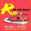Run Up and Down (feat. Dan Evens & ZJ Sparks) - Single
