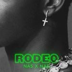 songs like Rodeo
