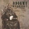 Burna Boy - Odogwu artwork
