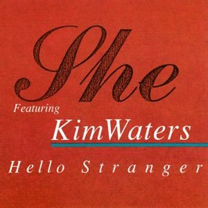 Hello Stranger (feat. Kim Waters) - EP Mp3 Download