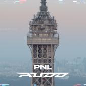 Au DD - PNL Cover Art