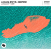 Lucas & Steve & Deepend - Long Way Home kunstwerk