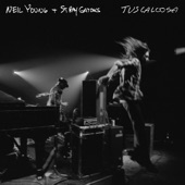 Neil Young - Here We Are in the Years (Live)
