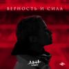 Дана Соколова - Верность и сила обложка