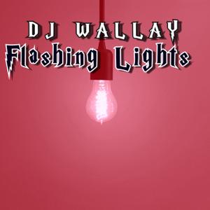 Dj Wallay, Ohmz The Don & Ray Bandz & Silas - Flashing Lights feat. Frost Legato