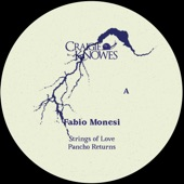 Fabio Monesi - Flanger City
