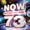 Various Artists - NOW That's What I Call Music! Vol. 73  artwork