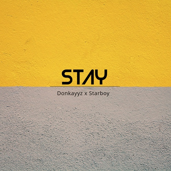 Stay (feat. Starboy) - Single
