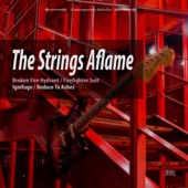 The Strings Aflame - Reduce to Ashes