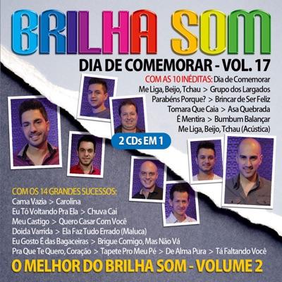 Dia de Comemorar, Vol. 17 + o Melhor do Brilha Som, Vol. 2 - Brilha Som