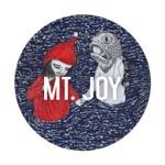 Mt. Joy - Every Holiday