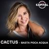 Cactus - Basta poca acqua