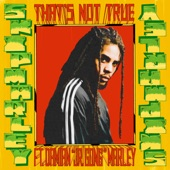 "Skip Marley - That's Not True (feat. Damian ""Jr. Gong"" Marley)"