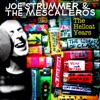 Joe Strummer & The Mescaleros - I Fought the Law