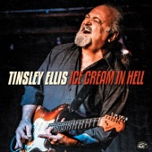 Tinsley Ellis - Hole in My Heart