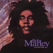 Bob Marley & The Wailers - Iron Lion Zion (Fallout Mix)