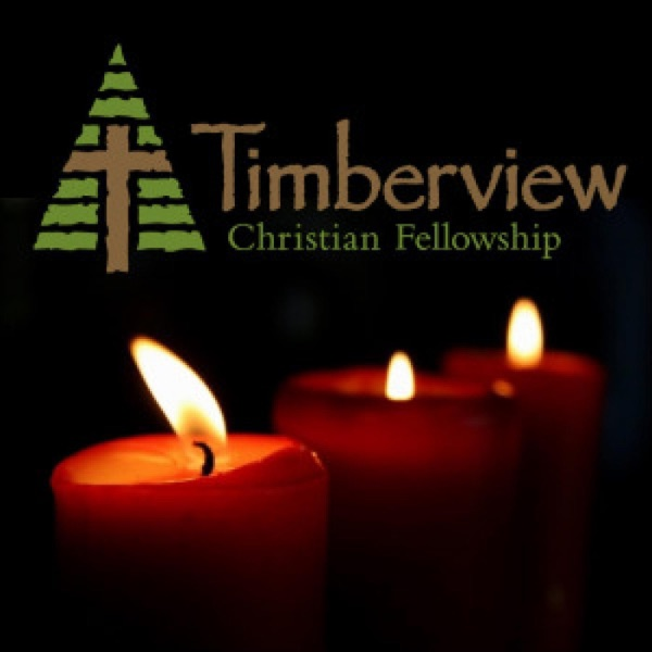 Timberview Church