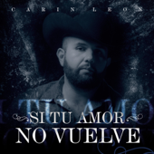 [Download] Si Tu Amor No Vuelve MP3