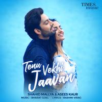 Tenu Vekhi Jaavan - Single