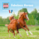 Fabulous Horses - HOW AND WHY