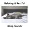Pink Noise Baby Sleep - White Noise Baby Sleep, BodyHI & White Noise For Babies lyrics