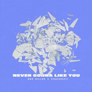 Bea Miller & Snakehips - NEVER GONNA LIKE YOU
