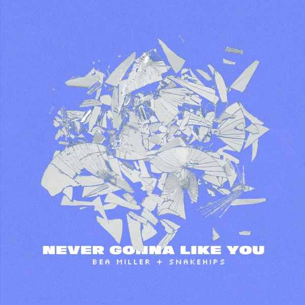 NEVER GONNA LIKE YOU - Single