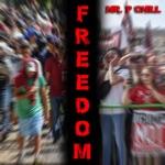 Mr. P Chill - Freedom