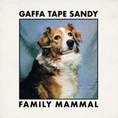 Gaffa Tape Sandy - My Desperate House