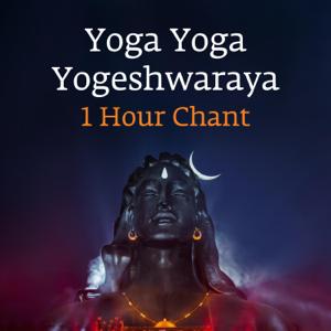 Sadhguru - Yoga Yoga Yogeshwaraya
