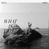 Delta Spirit - What Is There  artwork