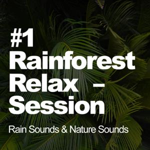 Rain Sounds & Nature Sounds - #1 Rainforest Relax Session