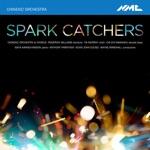 Chineke! Orchestra & Kevin John Edusei - The Spark Catcher (Live)