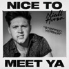 Nice to Meet Ya (Stripped Version) - Single