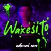 Waxesito - Single, Natanael Cano