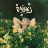 Daisies - Single