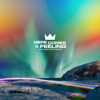 Here Comes a Feeling - Single, Louis The Child, Naomi Wild & Couros